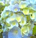 04-06-05_16-02.jpg
