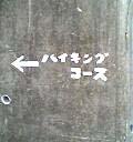 04-06-05_16-25.jpg